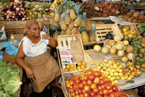 Crédit photo : Comité Départemental du Tourisme de la Guadeloupe