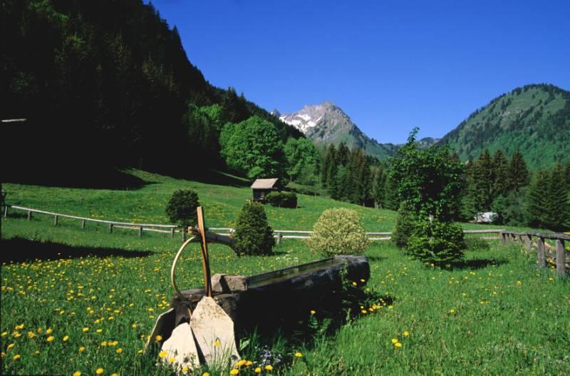 Fontaine en bois dans les alpages - Vallée d'Aulps (74) © Y. Tisseyre/OTVA
