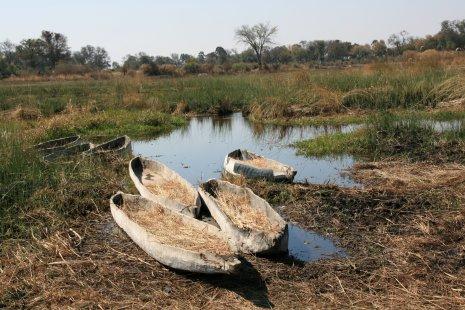 Mokoro sur l'Okavango