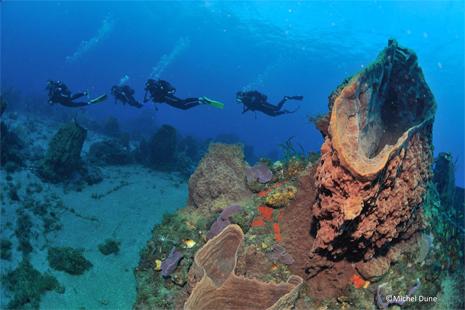 Inauguration nouvel espace plongée sous marine centre UCPA de Niolon – Le