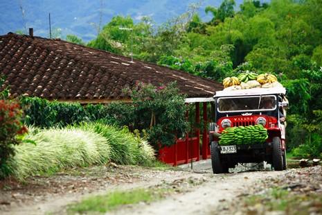 © Office de Tourisme de Colombie