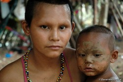 Les Nukak nécessitent une 'attention particulière' pour survivre, d'après le rapport. © D. Hill/Survival