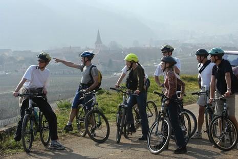 Cyclistes dans le vignoble alsacien © CRTA / Meyer