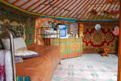 L 39 habitat mongole for Habitat du monde