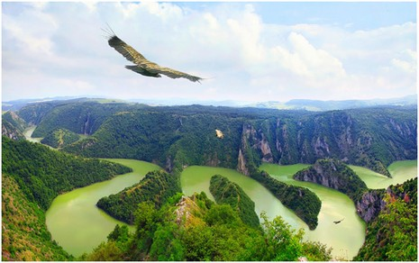 Canyon de l'Uvac: Dejan Marinovic