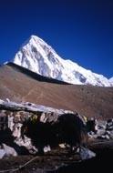 Pumori et Kala Patar depuis Gora Shep
