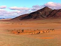 Paysages du Namib Rand Nature Reserve