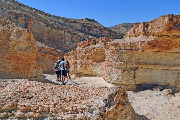 Une superbe balade relie Tamerza à Chebika. Mieux vaut se faire accompagner : rien ne ressemble plus à un canyon qu'un autre canyon.