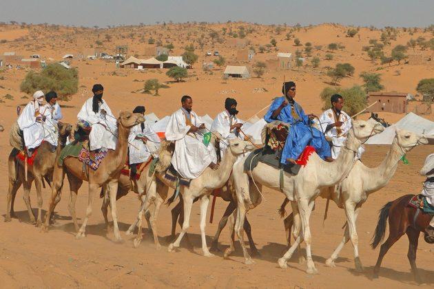 Courses de chameaux, marchés aux bestiaux , concours de tir… durant le festival des villes anciennes, en marge des concerts et conférences.