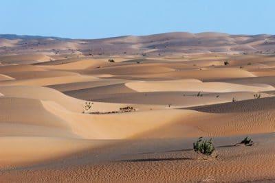 Adrar, le trésor saharien de la Mauritanie