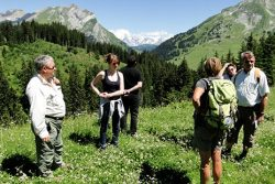 Savoie : Randos et fromages, la bonne recette