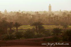 Le sud marocain : entre dunes et oasis