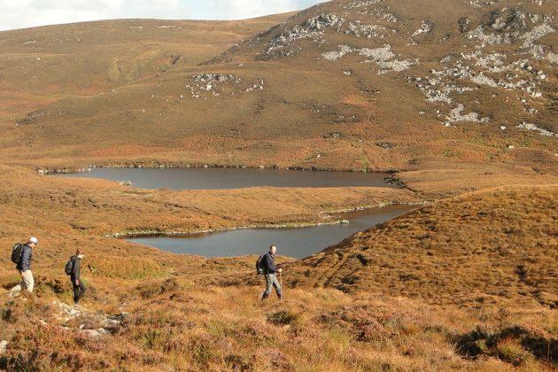 Des randonnées à travers la lande enchanteresse, avec de la bruyère jusqu'au genou.