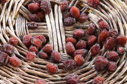Le marché aux fruits anciens d'Orpierre