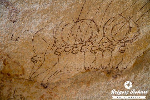 Pour Amadou Hampaté-Bâ, la scène des « bœufs accroupis » représentent la cérémonie du lotori chez les peuls bororo qui consiste à conduire le troupeau quotidiennement au marigot en souvenir de l'origine aquatique des bœufs. Henri Lhote défendra cette thèse. Depuis, les spécialistes ont démontré qu'elle n'était fondée sur aucun argument scientifique valable. Le Sahara, carrefour des civilisations étaient pourtant une idée romanesque des plus attachantes.