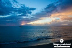 Martinique : Sea, rhum & sun