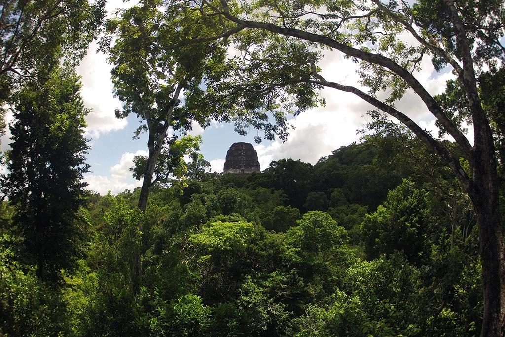 Tikal © Mikaël Faujour