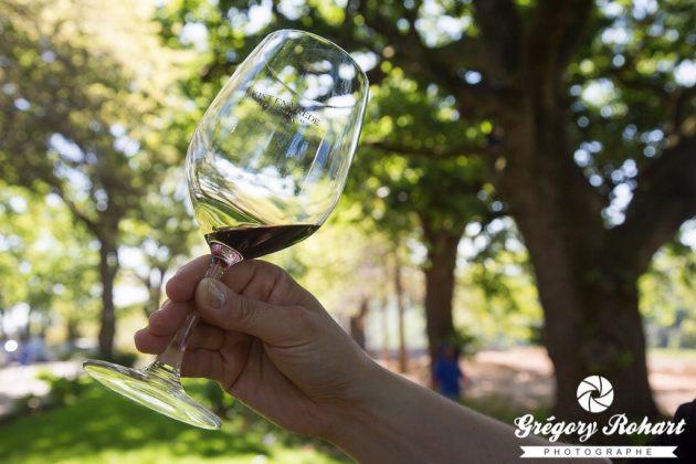 Dégustation d'un vin du domaine Rust en Vrede Estate