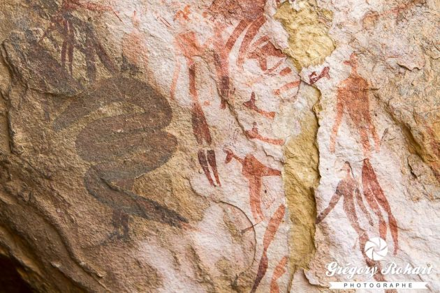 Peintures Bushmen à Main Cave