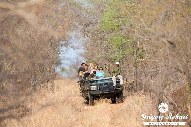 C'est parti pour 4 safaris