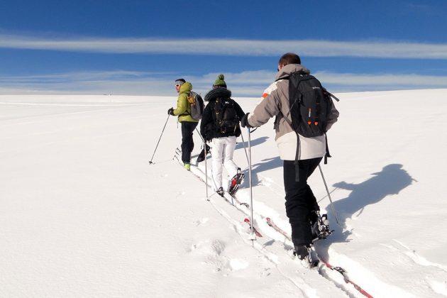 Les ascensions en free rando sont nettement moins sportives que le ski de randonnée.