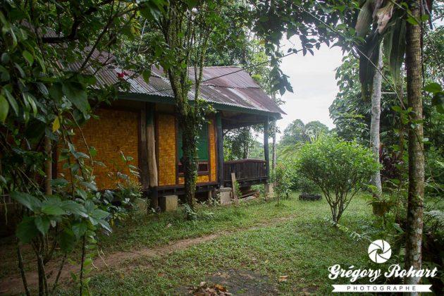 Hotel-Sumatra-GregoryRohart-4
