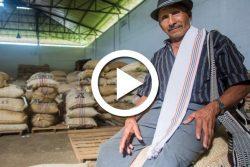 Colombie : Antioquia, au pays de la nature et du café