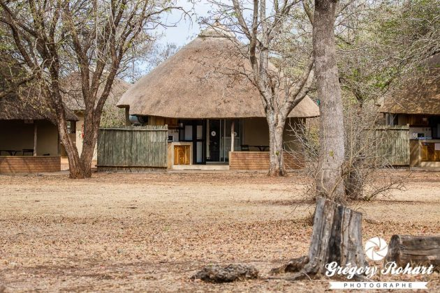 Satara Rest Camp (Kruger)