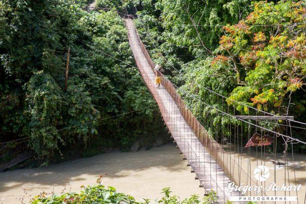Bahu Bridge pour atteindre la guesthouse Mega Inn de Tangkahan