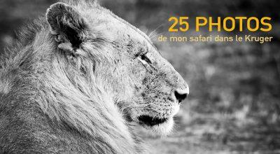 Afrique du Sud : les photos de mon safari dans le Kruger