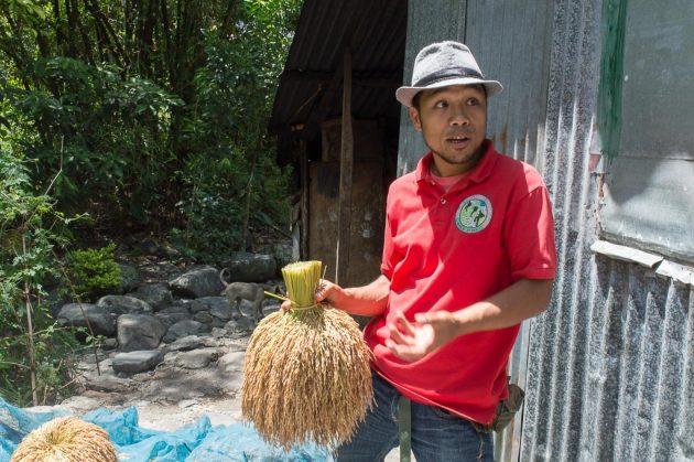 Les guides locaux sont une source précieuse pour avoir toutes les informations sur les rizières