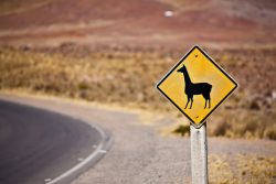 5 blogs pour voyager à travers l'Amérique du Sud