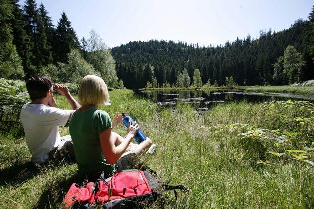 Petite pause pour profiter de l'environnement qui entoure Baiersbronn en Forêt-Noire