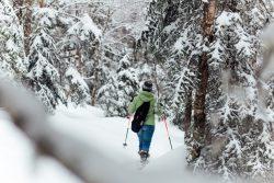 Raquettes dans le Parc National du Mont-Mégantic au Québec