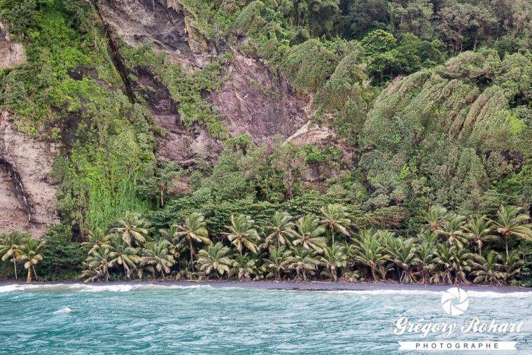 Côte sauvage au nord de la Martinique