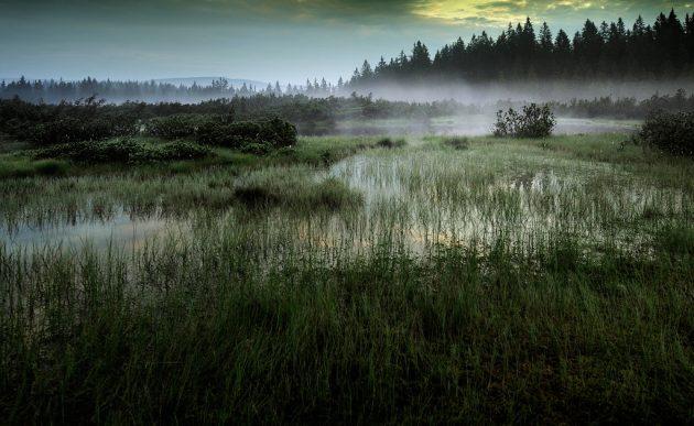 Parc national de Sumava
