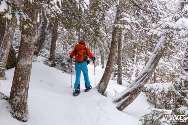 Raquette à neige dans le parc national de la Gaspésie