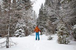 Roadtrip au Québec : 10 jours outdoor givrés