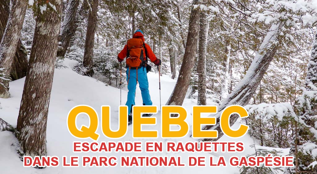 Escapade en raquettes dans le parc national de la Gaspésie au Québec