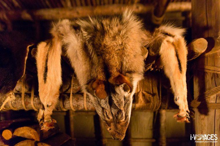 Peau de loup