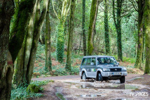 Roadtrip dans le parc naturel de Sintra-Cascais