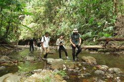 Costa Rica : Le Corcovado, côté mer et côté terre