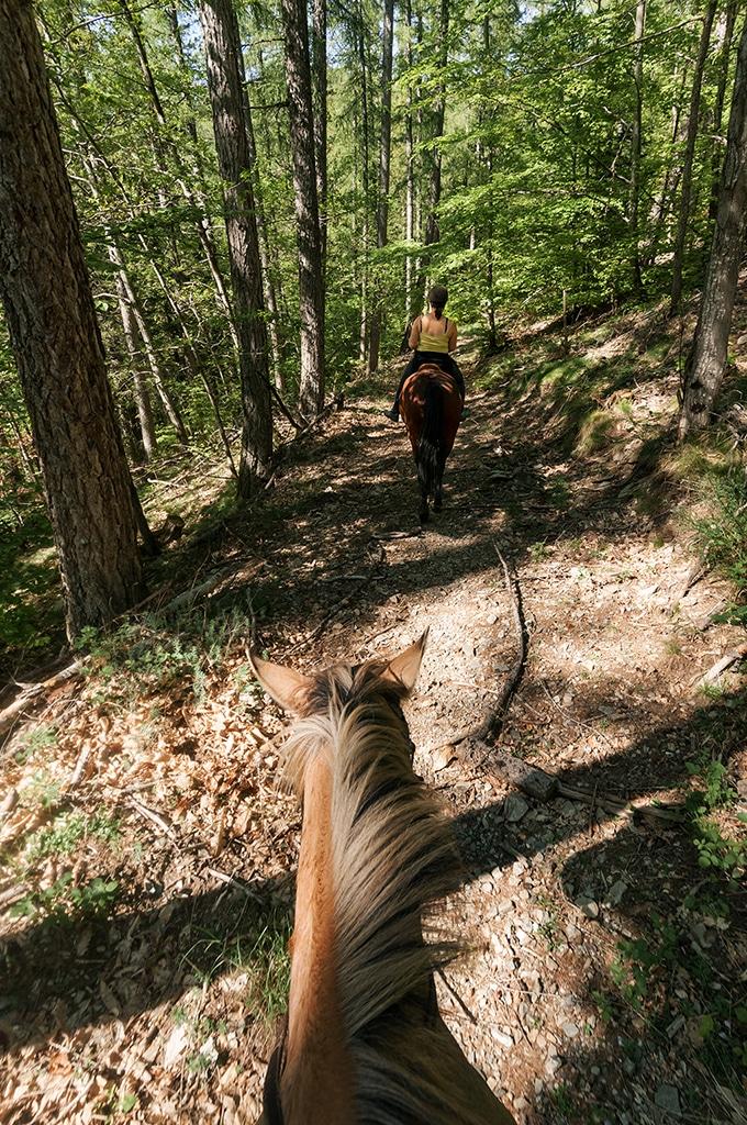 Equitation en Lozère