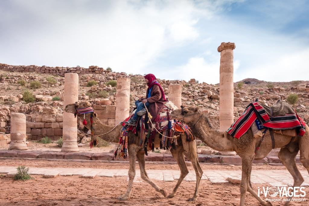 Les dromadaires sont nombreux à Pétra. Si aujourd'hui, ils transportent les touristes, dans des temps plus anciens les les caravaniers avec leurs dromadaires transportés encens et myrrhe. Voie à colonnades, Pétra, Jordanie.