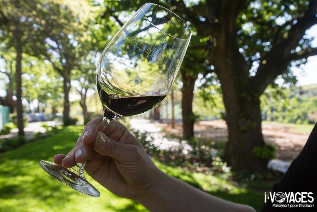 Dégustation de vin à Stellenbosch