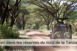 Safari dans les réserves du nord de la Tanzanie