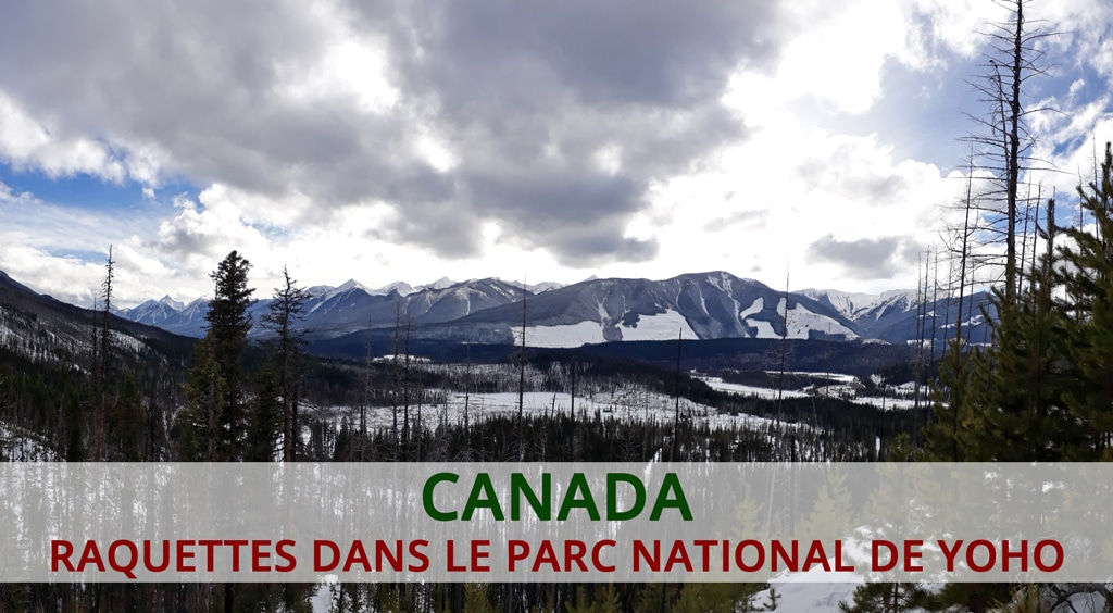 Raquettes dans le parc national de Yoho dans les rocheuses canadiennes