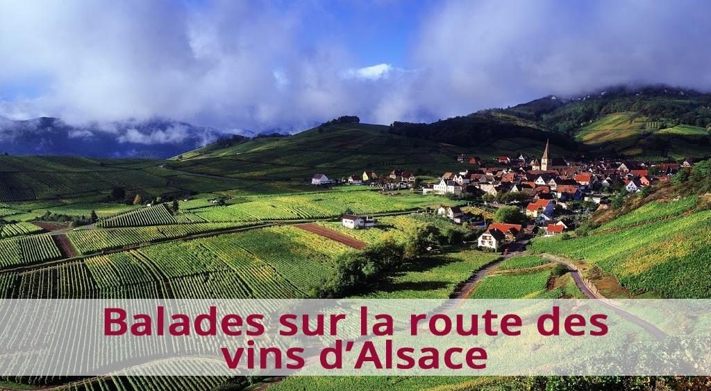 Balades sur la route des vins d'Alsace
