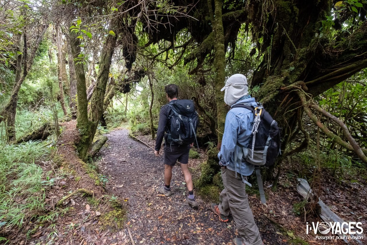 Randonnée au volcan Barva