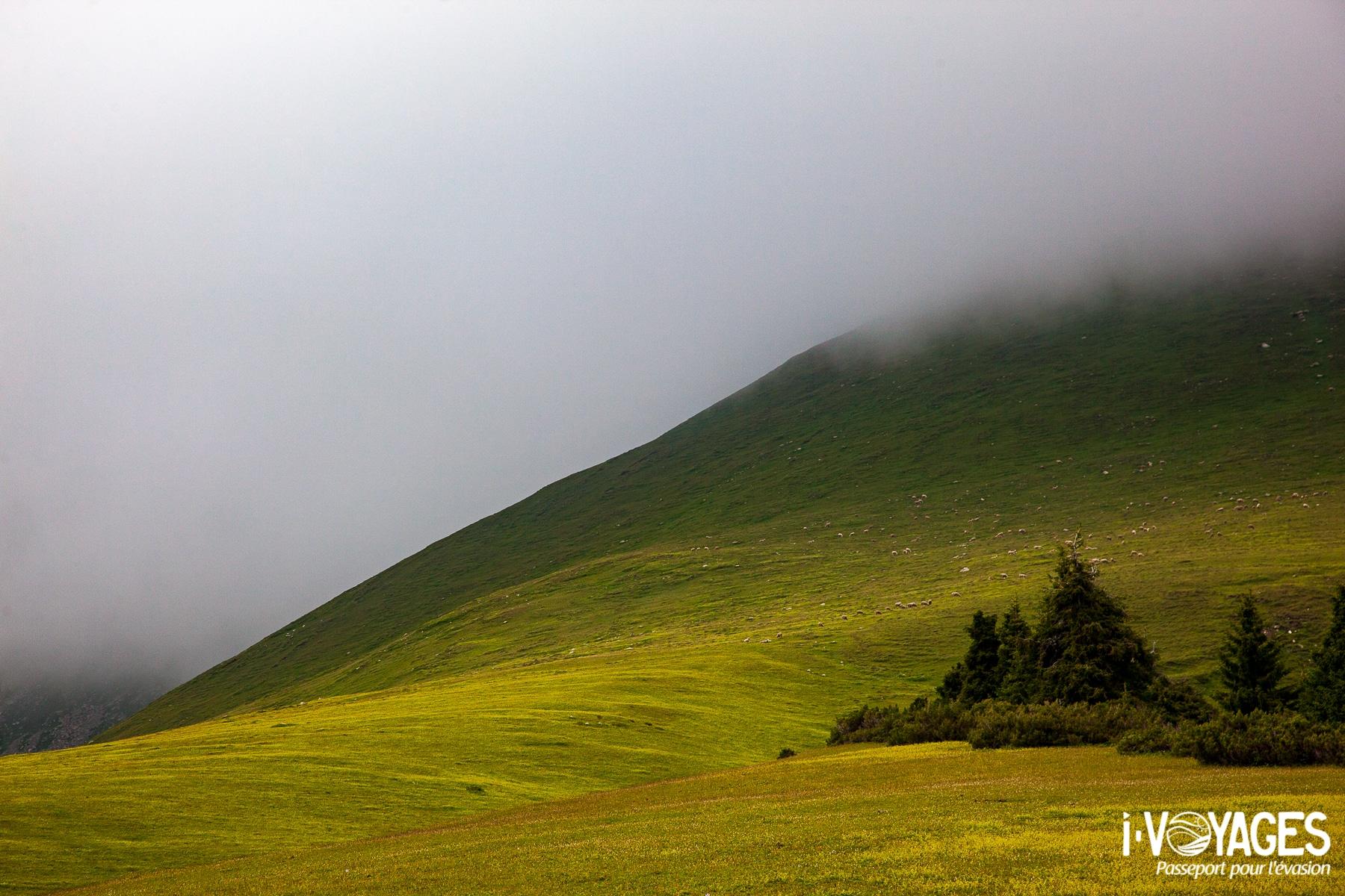 Kirghizistan-gregoryrohart-9428